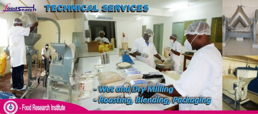 Primary Food Processing
